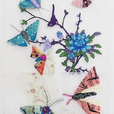 Jan-Clark-mothgarden8