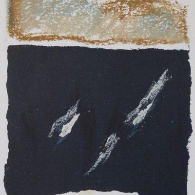 Nicola-Henley-Gulls-PassingI