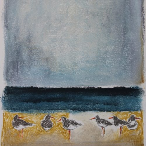 Oystercatcher Shoreline I