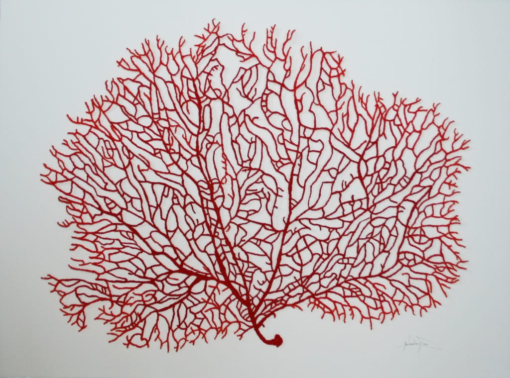 meredith-woolnough-big-red-fan