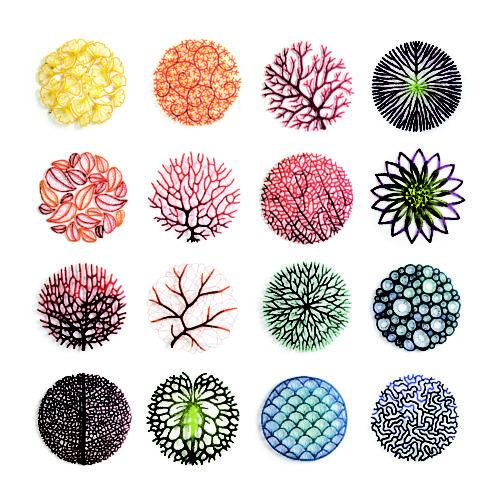 Meredith Woolnough Nature Studies grid