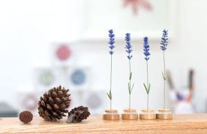 Lavender-on-bench-web