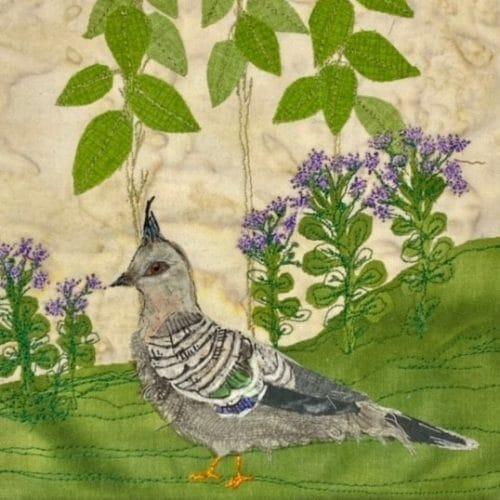 Crested Pigeon: Garden Threads #08