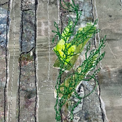 Grey Trees : Envelope Series#67